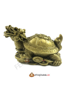 Lo Shu - the Dragon Head Tortoise