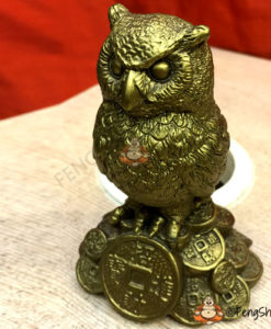 Feng Shui Owl for Genius and Wisdom only at Feng Shui India