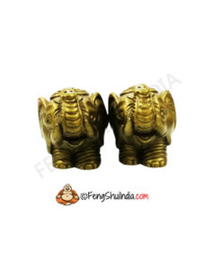 Pair of Elephants-Trunk Upwards