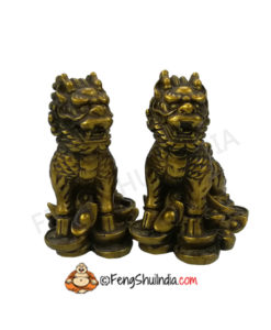 Dragon Lions are legendary Guardians and are prominently used to guard temples, offices, factories and homes