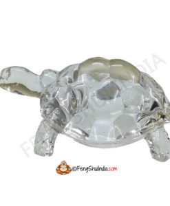 Crystal Turtle