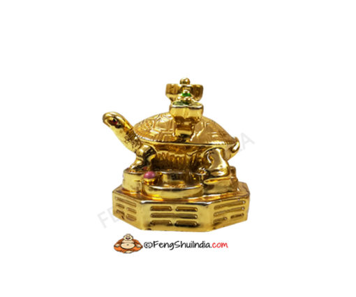 Golden Turtle With RU-YI