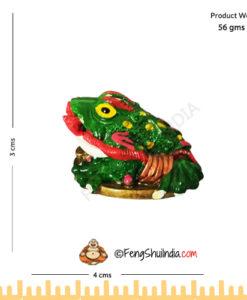 Feng Shui Frog With Ru-Yi Stick