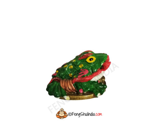 Feng Shui Frog With Ru-Yi Stick