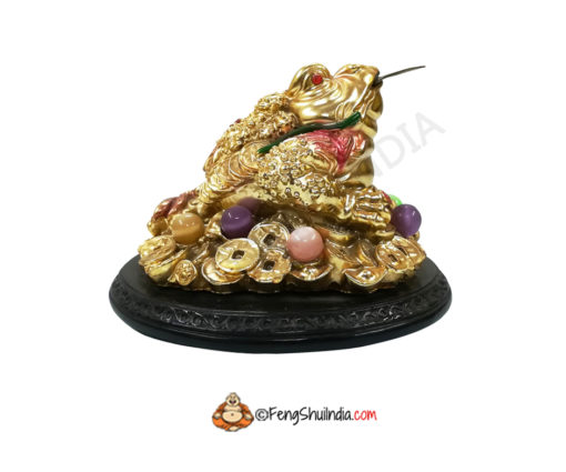 Feng Shui 3 Legged Wealth Frog