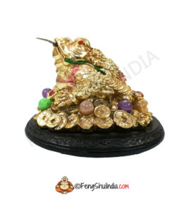 Feng Shui 3 Legged Wealth Frog