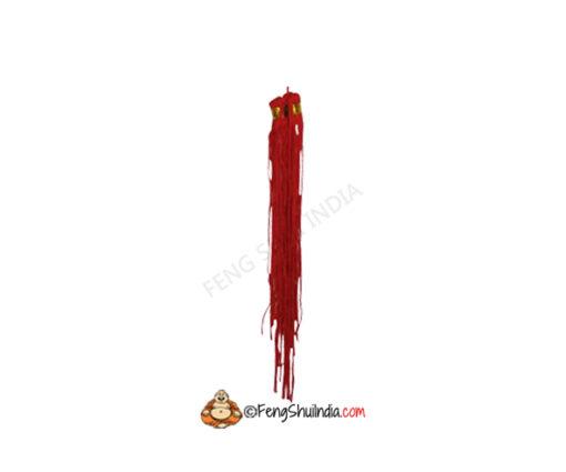 Energised Red Pepper Hangings