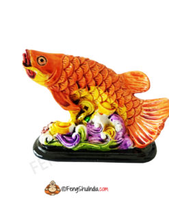 Arowana fish for Health Wealth and Prosperity